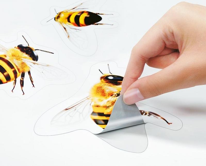 Gráfica para Impressão Digital Offset Vila Guilherme - Impressão Digital Pequenas Tiragens